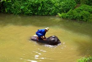 Thailande septembre 2008 (278)