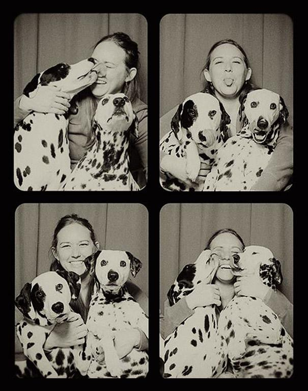 pit-bull-photo-booth-Lynn-Terry-3