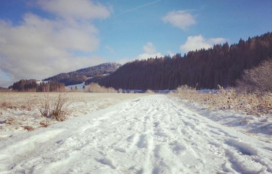 chemin de neige pano