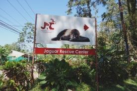 JRC Entrée